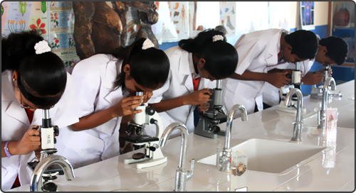 an analysis of the laboratory experiment on photosynthesis in biology Lab report on plant pigments and photosynthesis biology essay print reference conclusion and error analysis: to make the experiment more scientifically.